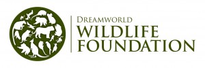 DWF-Logo-Horizontal-Shadowing-Tran